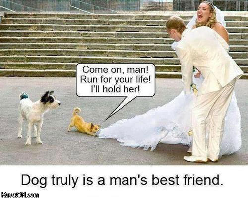 Dog truly is a man's best friend