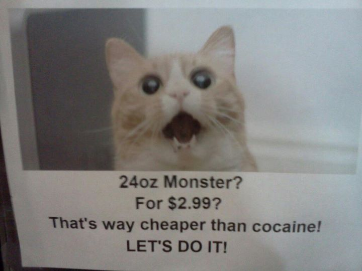 Cat cocaine