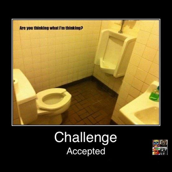 Toilet challenge accepted