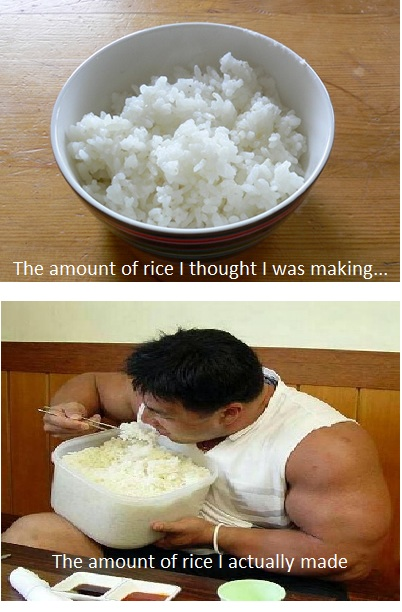 The amount of rice I actually made