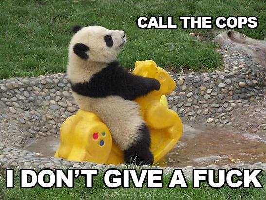 Panda I don't give a fuck