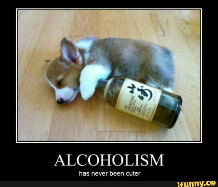 Alcoholism has never been cuter