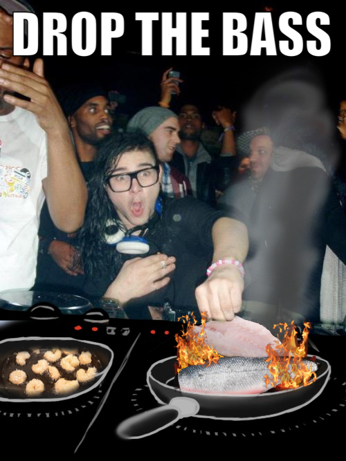 Skrillex drop the bass