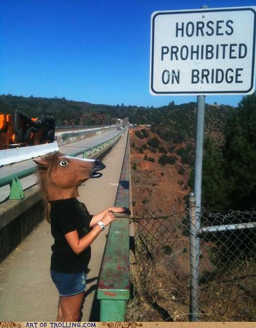 Horses prohibited on bridge