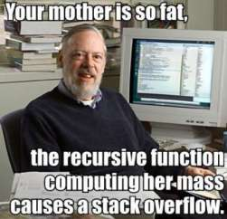 Your mother is so fat the recursive function...