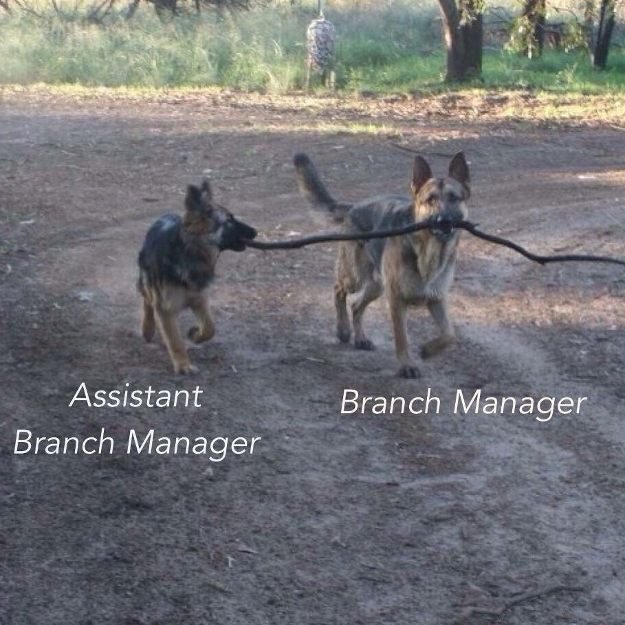Branch manager with assistant branch manager
