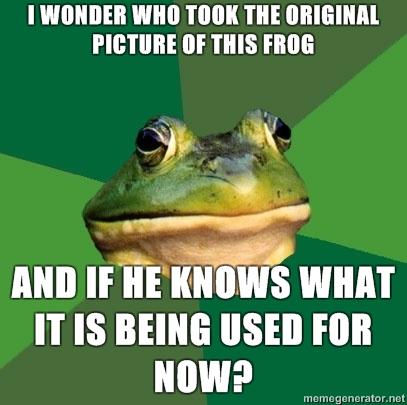 Frog meme