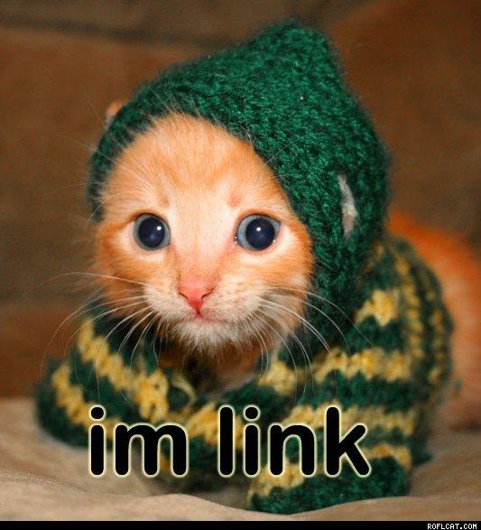 I'm link cat