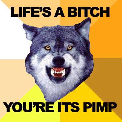 Life's a bitch, you're its pimp