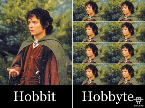 Hobbit, Hobbyte