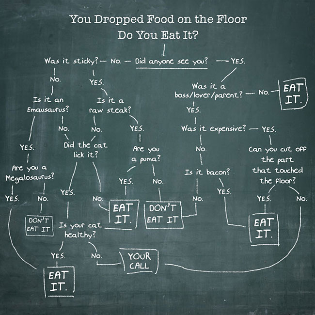 You dropped food on the floor flow chart