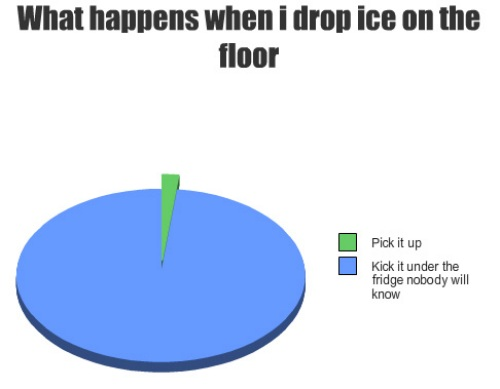 What happens when I drop ice on the floor pie chart