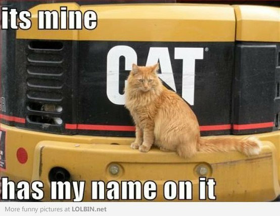 It's mine has my name on it cat