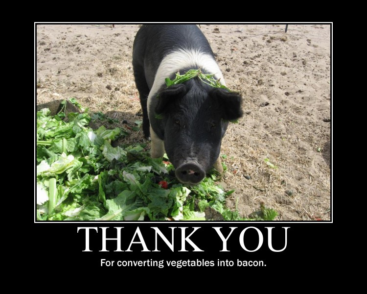 Converting vegetables into bacon