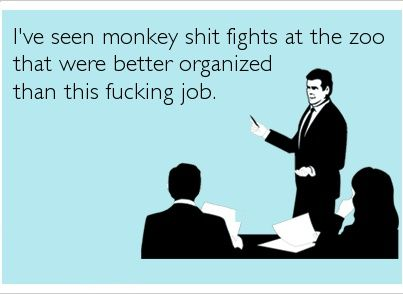 I've seen monkey shit fights at the zoo that were better organized than this fucking job