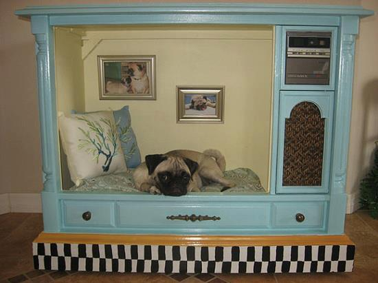 Pug TV