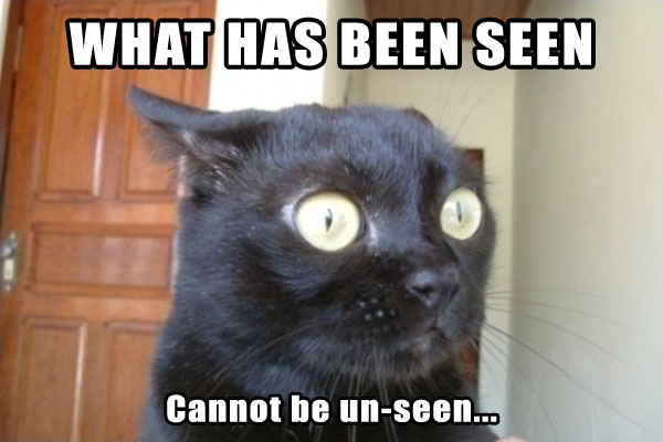 What has been seen cannoy be unseen cat