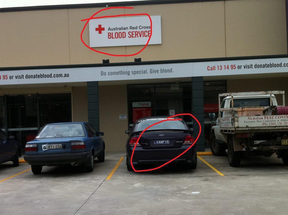 Vampyr blood service