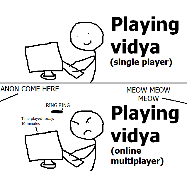 Playing vidya single player vs online multiplayer