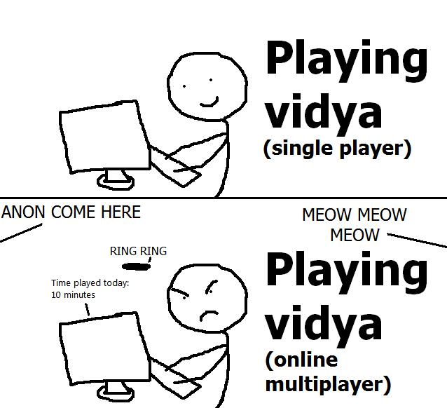 Playing vidya single player vs online multiplayer