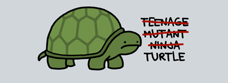 Only turtle