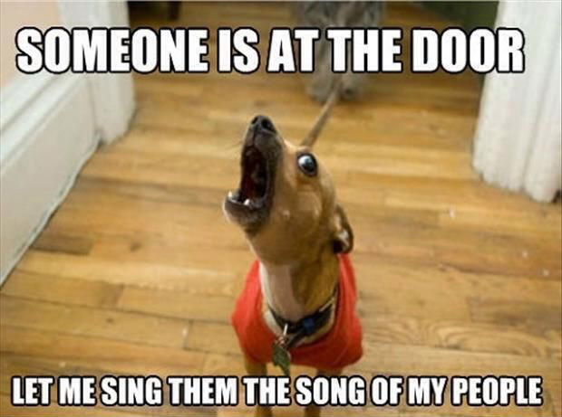 Someone is at the door, let me sing them the song of my people