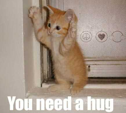 You need a hug