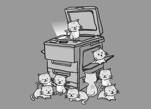 Kitty copy