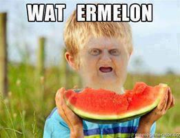 Wat ermelon