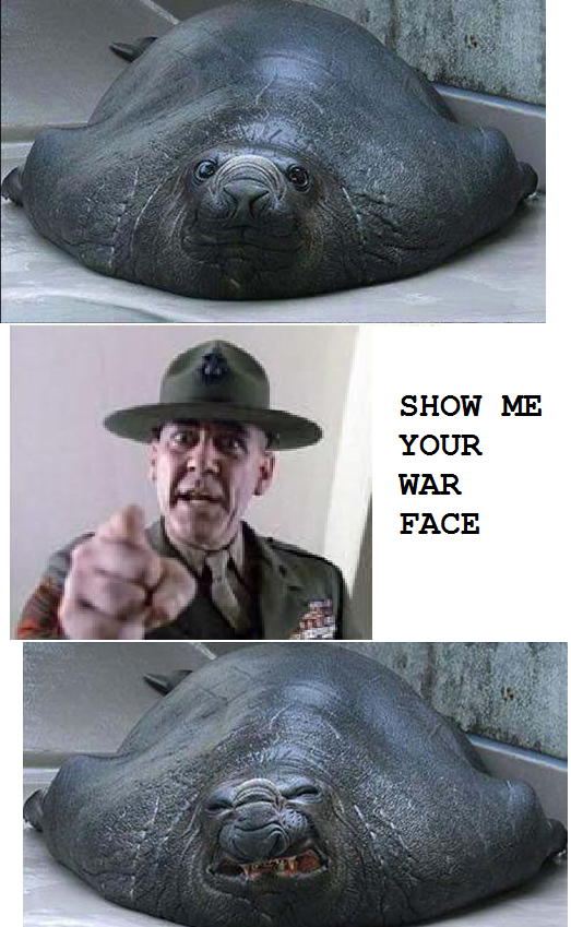 Show me your war face