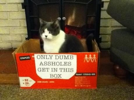 Only dumb assholes get in this box